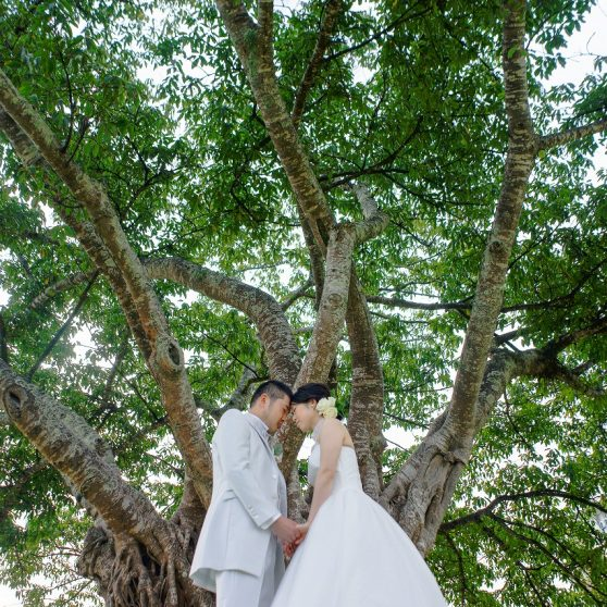 ヌメアビーチ&ガーデンフォト B.Y様&B.R様 ニューカレドニア